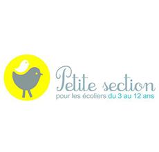 logo-jaune-petitesection